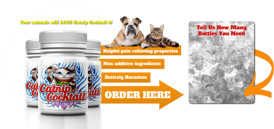 Catnip Cocktail - Mood Enhancer Supplement for Cats and Dogs